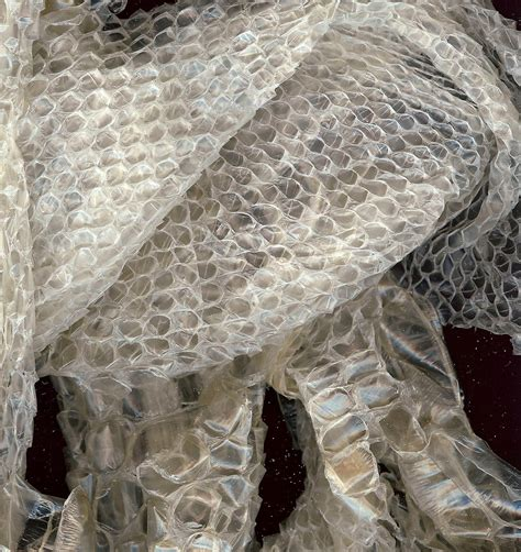 shed snake skin for crafting wiccan pagan by