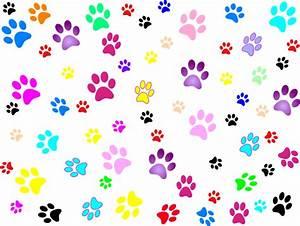 Dog paw print Clipart png transparent - Cerca con Google ...