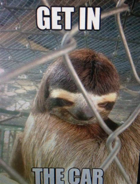 Creepy Sloth Meme - creepy sloth sloths pinterest creepy sloth the o jays and the van