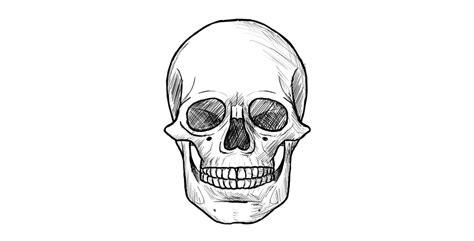 draw  skull