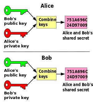 diffie hellman public key issue programming hints