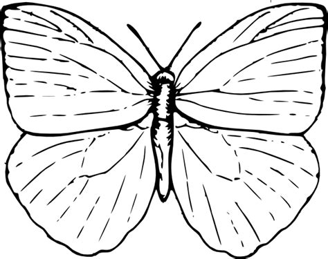 butterfly clip art  clkercom vector clip art  royalty  public domain