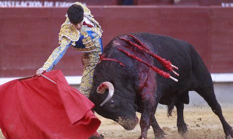 spain mulls  kill bullfights  nod  animal rights