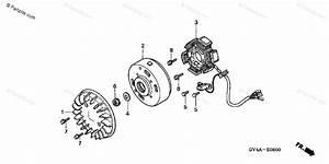 Honda Scooter 2003 Oem Parts Diagram For Alternator