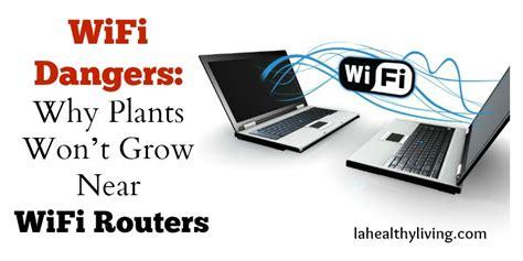 wifi dangers why plants won t grow near wifi routers