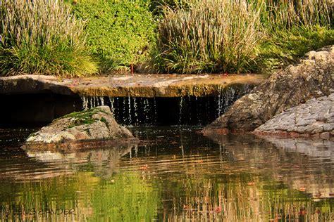 Japanischer Garten Bonn by Japanischer Garten Bonn 2 Foto Bild Landschaft Garten