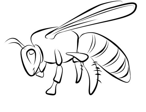 Coloring Bee by Free Printable Bee Coloring Pages For