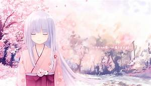 Cherry, Blossoms, Coffee