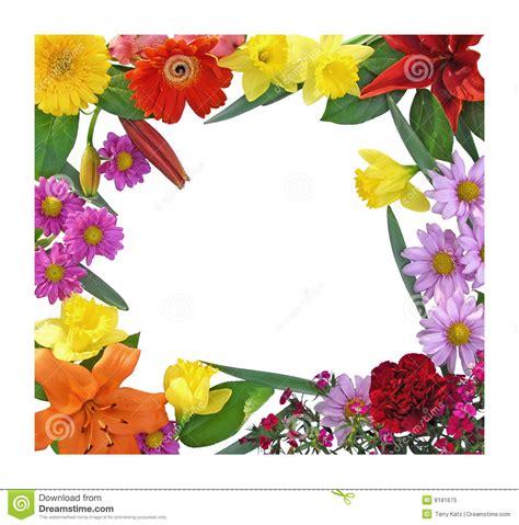 flower border images    cliparts