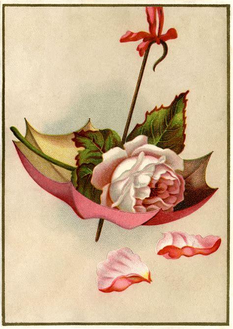 vintage rose umbrella image gorgeous  graphics fairy