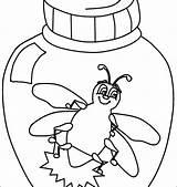 Coloring Bug Pages Beetle Bugs Inchworm Vw Volkswagen Sheets Preschool Getcolorings Printable Getdrawings Colorings sketch template