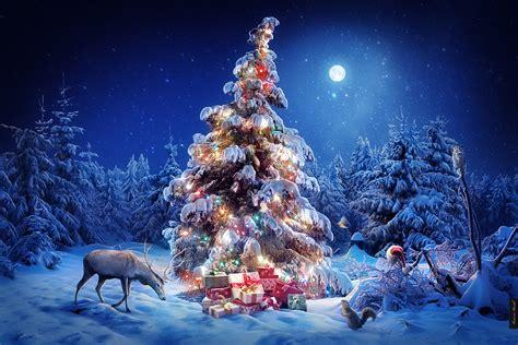 Кострома широко отпразднует Новый год Imennoru