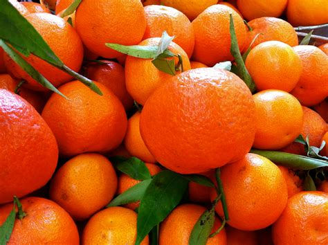 tangerine wallpapers group   items