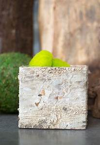 Birch, Bark, Square, Pot, With, Liner, 5in