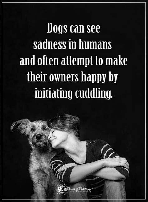 dogs  sense  happiness  sadness