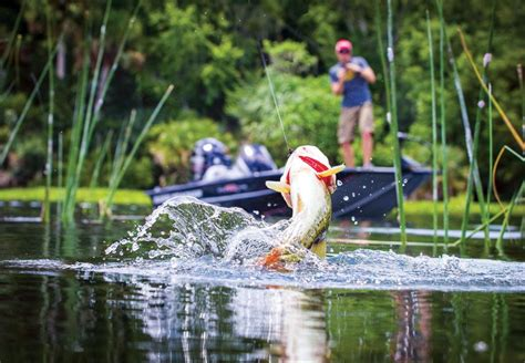 Bass Fishing By Boat by Tracker Pro Team 190 Tx Basses For The Masses Boats