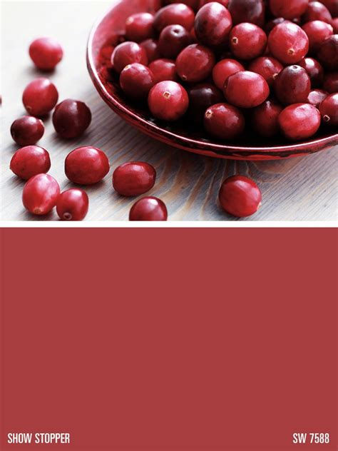 cranberry paint color sherwin williams sherwin williams red paint color show stopper sw 7588