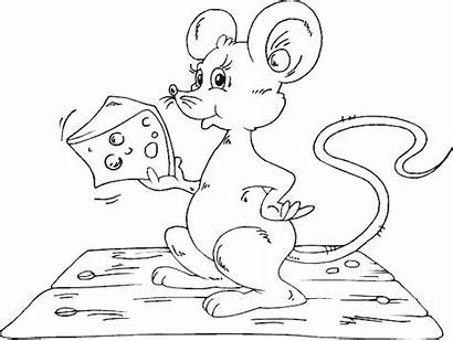Coloring Mouse Cheese Pages Muis Para Colorear