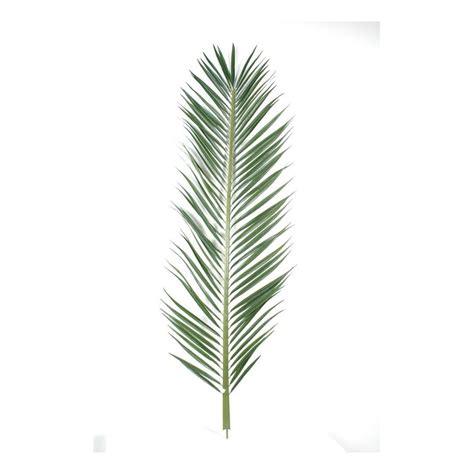 feuille de palmier deco feuille palmier mascarena palme 185 et 220 cm feuillages branches baies reflets nature lyon