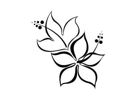 easy floral designs cool easy drawing of a flower clipart best