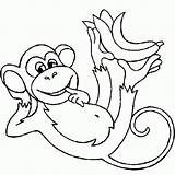 Coloring Pages Monkey Printable Realistic sketch template