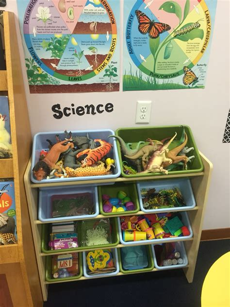 pre k classroom set up science shelf cdlc 330 | 5db8f30ccfc17542da8a21a4dcefb8a0