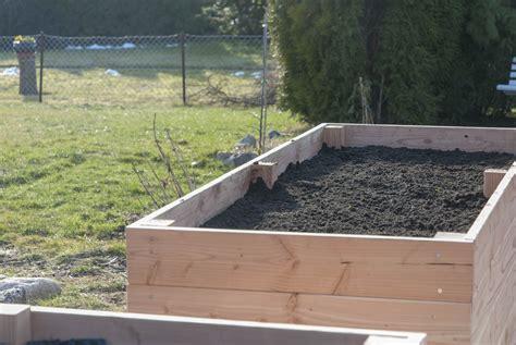 Bepflanzen Eines Hochbeetes by Hochbeet Bepflanzen Tipps Zur Pflanzenauswahl Und Wie