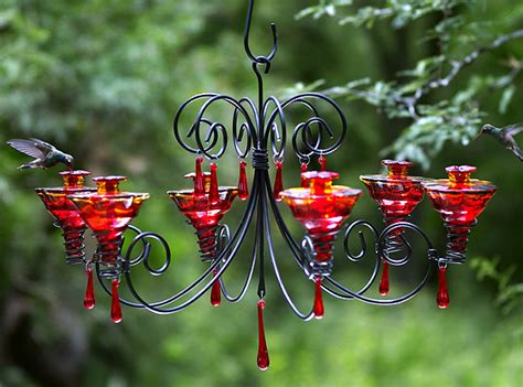 hummingbird feeder recipe recipe binder