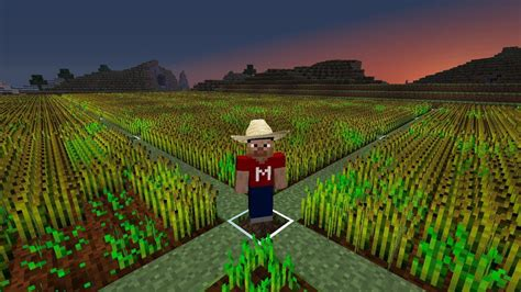 minecraft episode  huge wheat farm youtube