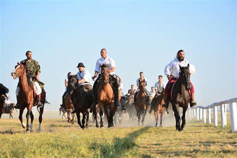 Kostenlose foto : Fahrer, Ranch, Pferde-Reiten, Sport ...