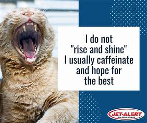 I Do Not  U0026quot Rise And Shine U0026quot  I Usually Caffeinate And Hope For The Best  When Alertness Is Required