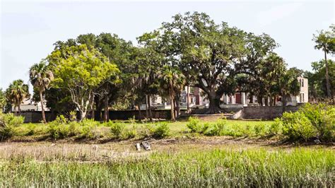 Adventure Boat Tours by Amelia Island Cumberland Island Boat Tours Amelia