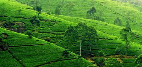 beautiful bangladesh the land of secret