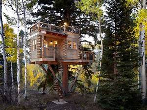 Dazzling Treehouse Designs convention Denver Rustic