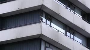 cds gegen stadttauben auf dem balkon frag mutti With garten planen mit netz für balkon gegen tauben