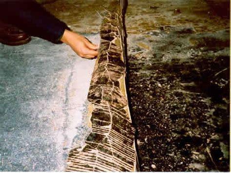 Asbestos   Floor Tile Removal   EH: Minnesota Department