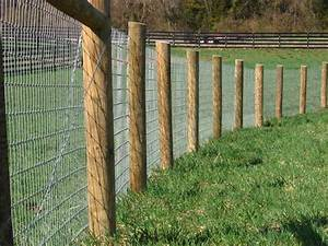 wire fencing view the entire photo gallery for maryland With no wire electric dog fence