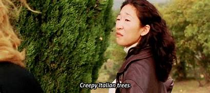 Under Sun Tuscan Quotes Trees Italian Oh