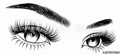 Vector Lashes Eyebrows Makeup Drawn Hand Card