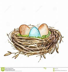 Hand Drawn Watercolor Art Bird Nest With Eggs , Easter ...