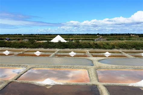code postal d olonne sea salt extraction