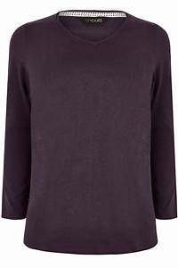 Purple Long Sleeved V Neck Jersey Top Plus Size 16 To 36