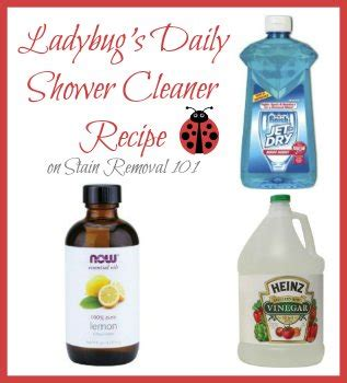 homemade shower cleaner recipes  daily  heavy duty