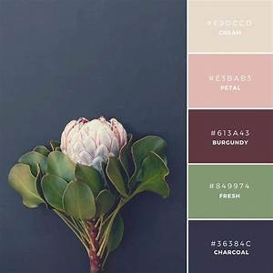 Build your brand: 20 unique color combinations to inspire