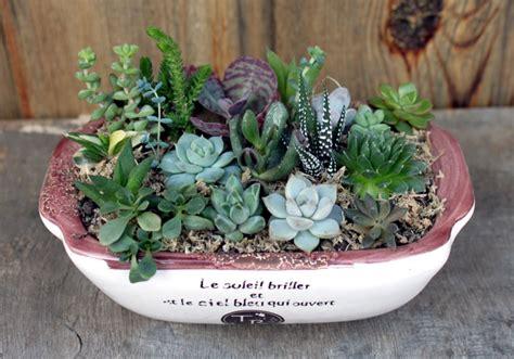 Composition Plantes Grasses Exterieur D 233 Co Jardin En Plantes Grasses 40 Id 233 Es Pour Pimper L Ext 233 Rieur