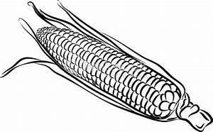 Corn Clipart Black And White | Letters Example
