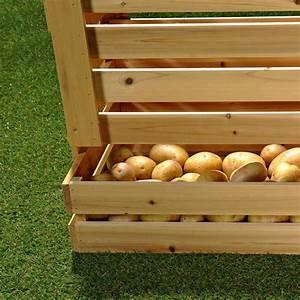 Caisse De Pomme : xxl pomme de terre bo te r serve caisse panier de fruits pomme caisse caisse vin caisse bois ~ Teatrodelosmanantiales.com Idées de Décoration