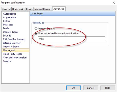 user customized agent wsw enter example