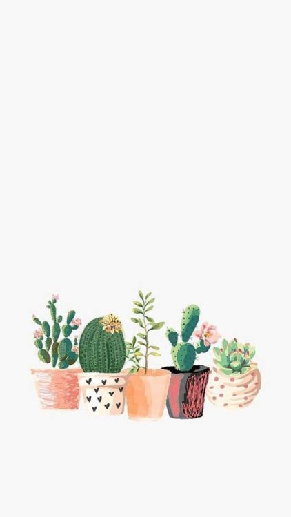Pretty Iphone 6 Wallpaper Cacti Wallpaper Tumblr