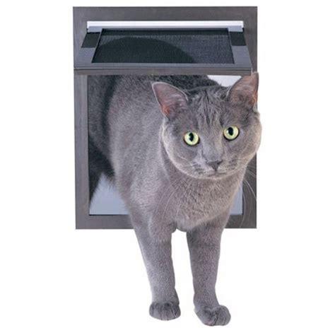 petsafe pet screen door  dogs cats p zb